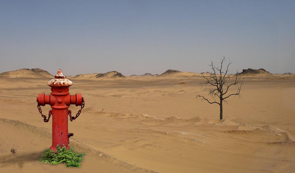 desert & fire hydrant